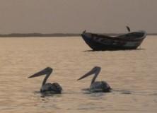 Diapo : Quelques images, paysages, visages de Casamance