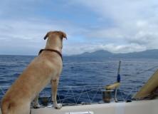 Diapo : un mois aux Açores